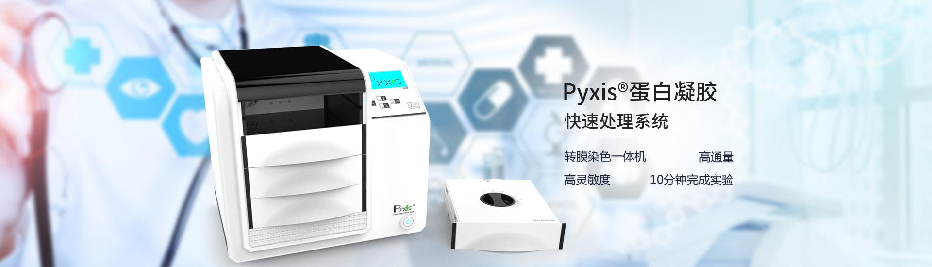 蛋白凝胶快速转膜仪、染色仪